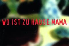 Wo-ist-zu-Hause-Mama.-Perlen-deutschsprachiger-Popmusik-CD-Trikont-ÔÇÄUS-210-1995